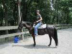 Meet my horse, Cappuccino :-)